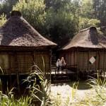 Avonturen in Nigeria (03)
